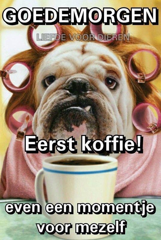 bonjour tasse de café