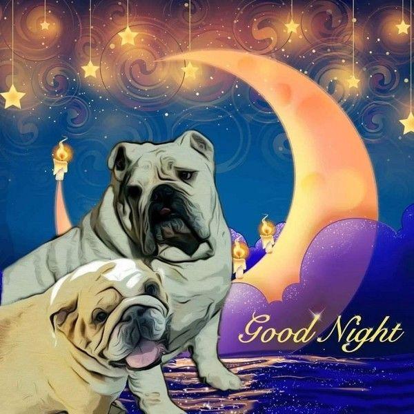 """""""Good Night"""" - Croissant de lune et suspension d'étoiles ..."""