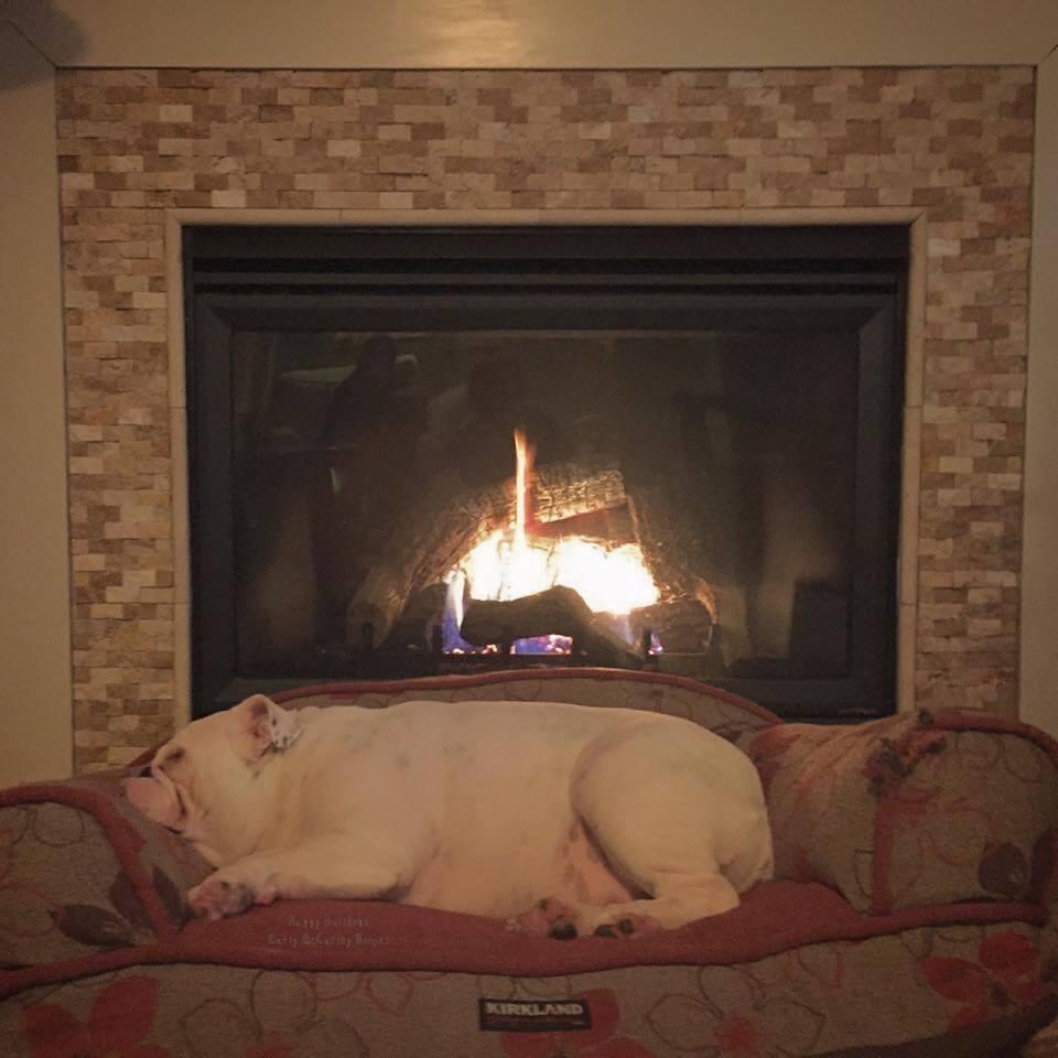 rien de mieux qu 39 une bonne sieste au coin du feu. Black Bedroom Furniture Sets. Home Design Ideas