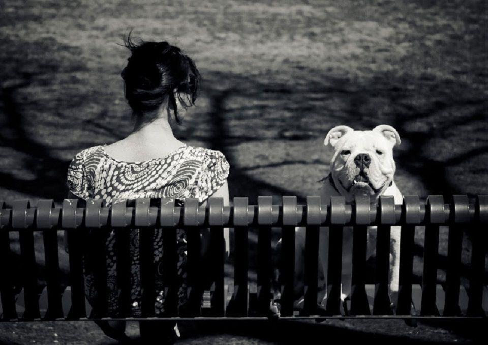Sur un banc public - Faire l amour sur un banc ...